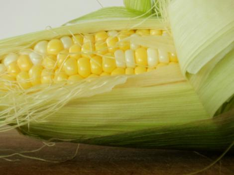 BBQ'd corn on the cob is a favourite vegan snack of mine...
